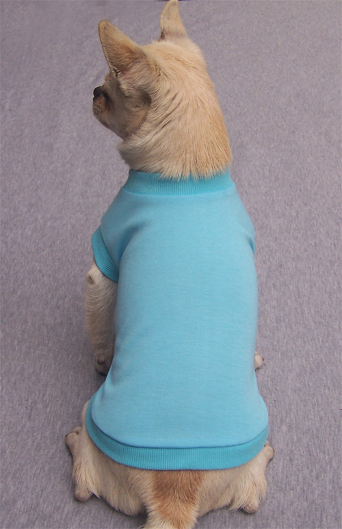Blank Dog T Shirt Blue On Sale Xs Xxl 12 Pieces Dogsmartway