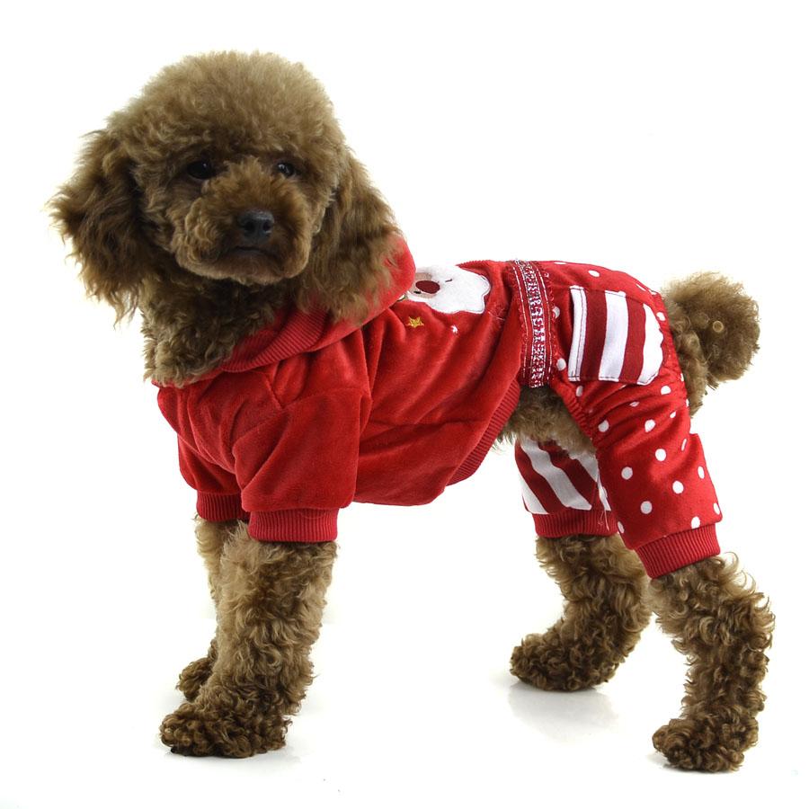 Fashion pet dog clothes